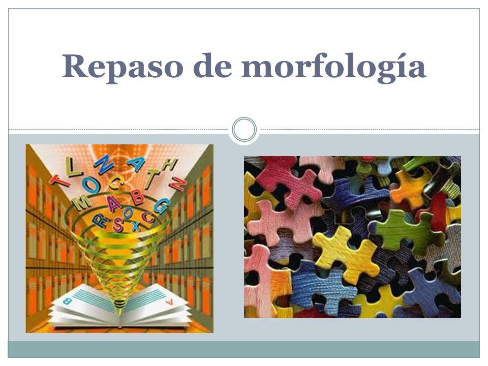 Repaso de morfología