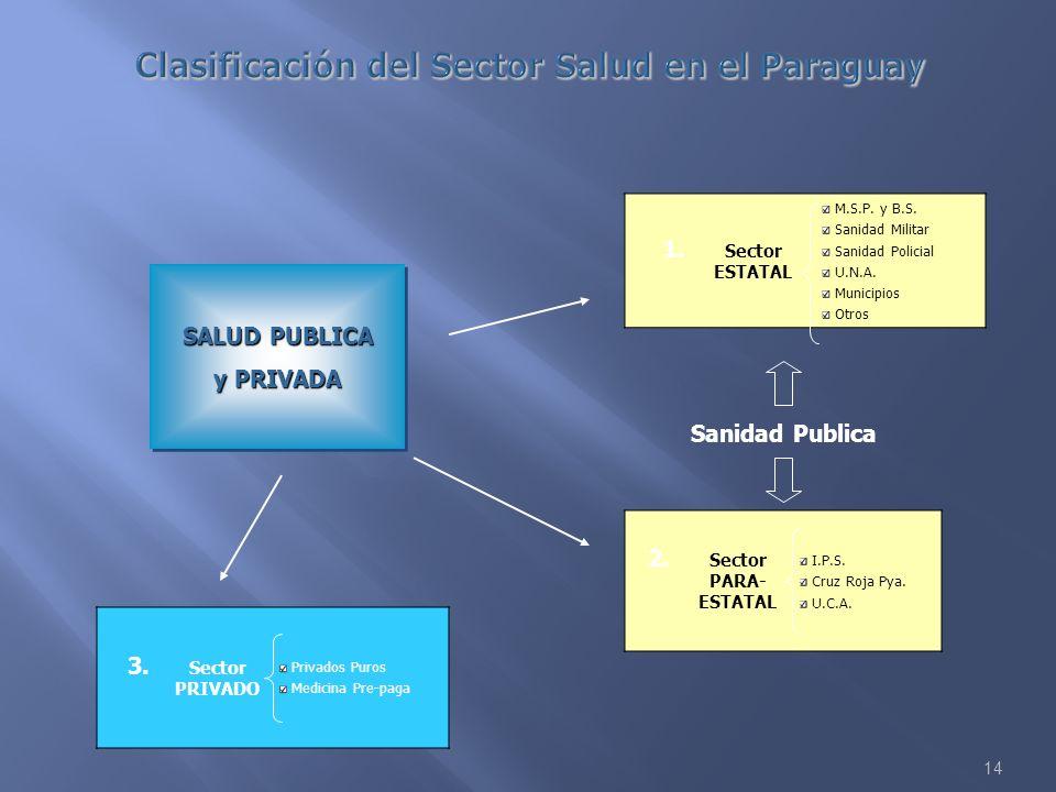 Clasificación del Sector Salud en el Paraguay