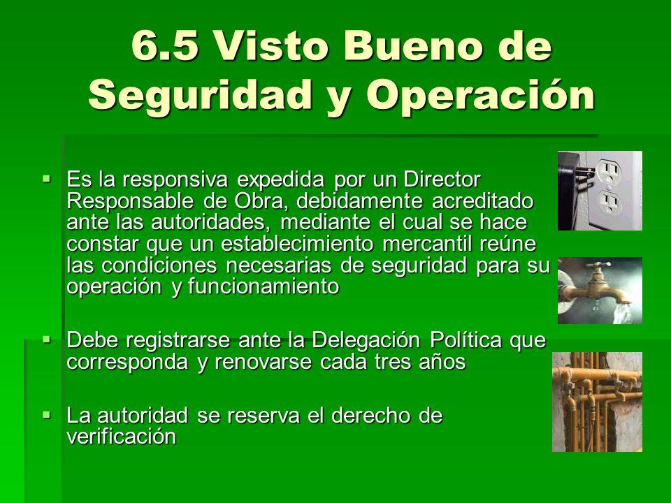 6.5 Visto Bueno de Seguridad y Operación