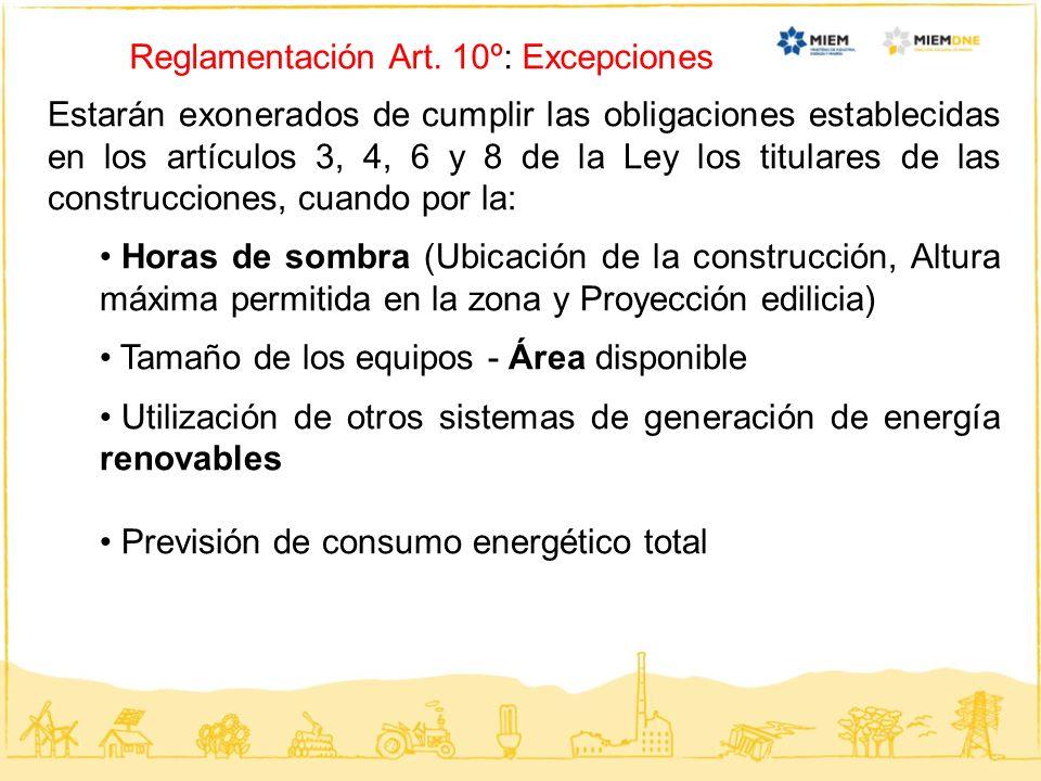 Reglamentación Art. 10º: Excepciones