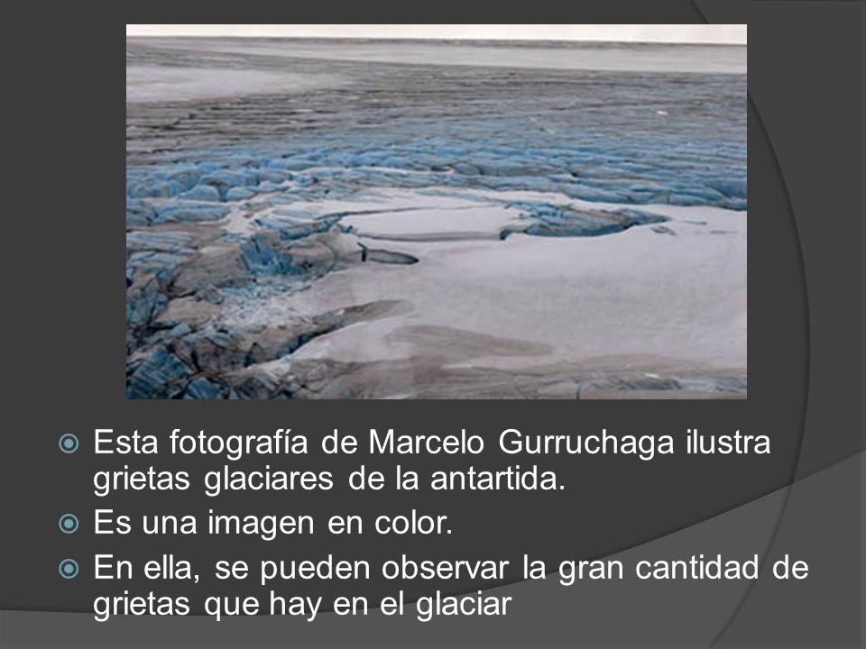 Esta fotografía de Marcelo Gurruchaga ilustra grietas glaciares de la antartida.