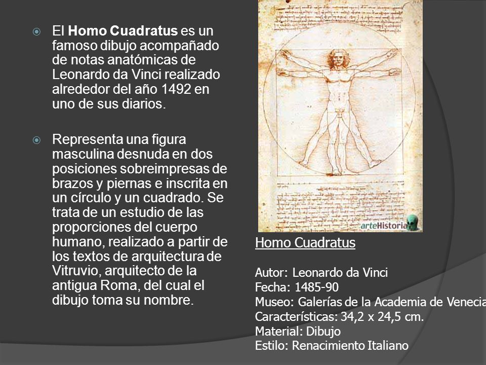 El Homo Cuadratus es un famoso dibujo acompañado de notas anatómicas de Leonardo da Vinci realizado alrededor del año 1492 en uno de sus diarios.