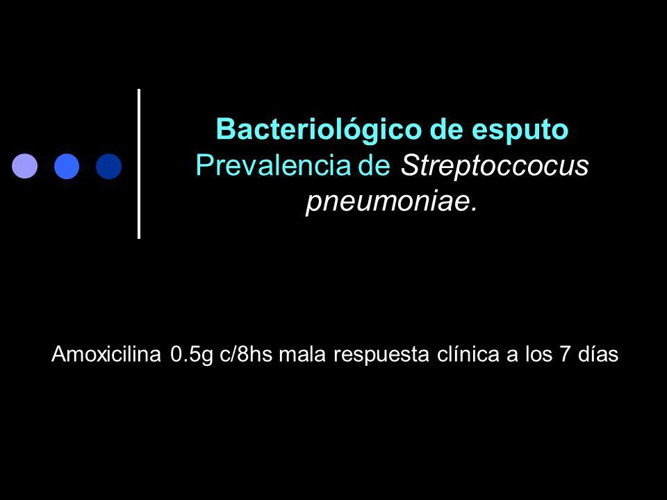 Bacteriológico de esputo Prevalencia de Streptoccocus pneumoniae.