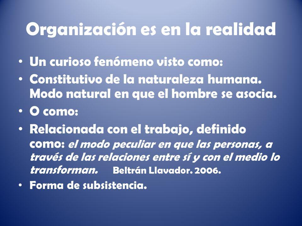 Organización es en la realidad