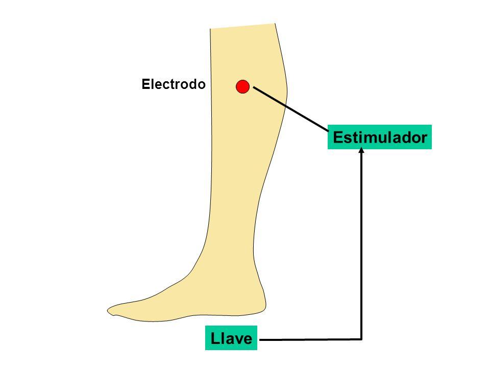 Electrodo Estimulador Llave