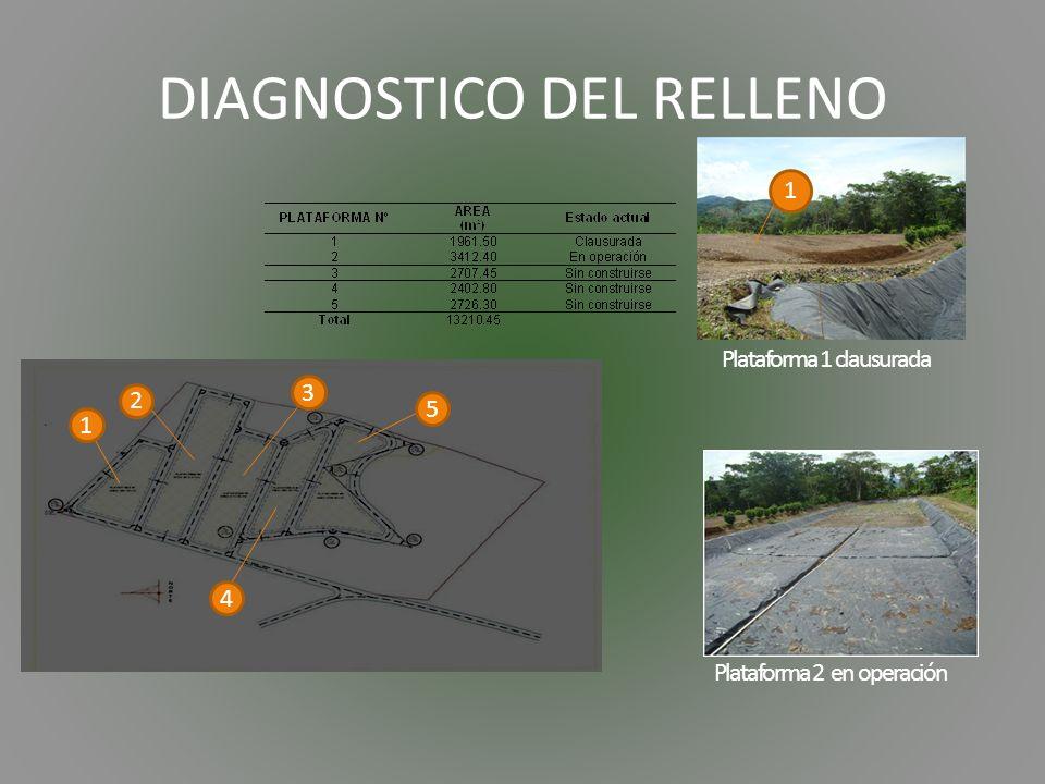 DIAGNOSTICO DEL RELLENO