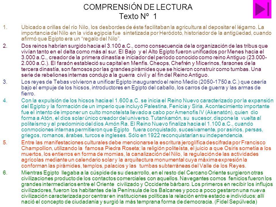 COMPRENSIÓN DE LECTURA Texto Nº 1