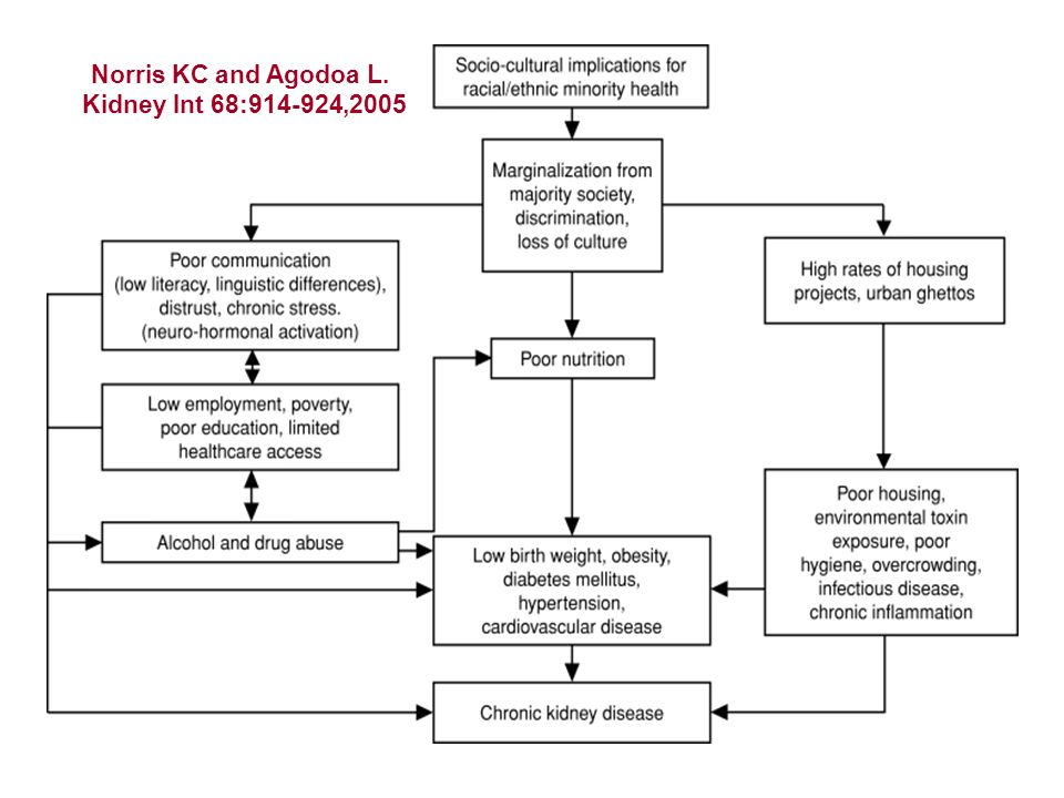 Norris KC and Agodoa L. Kidney Int 68:914-924,2005