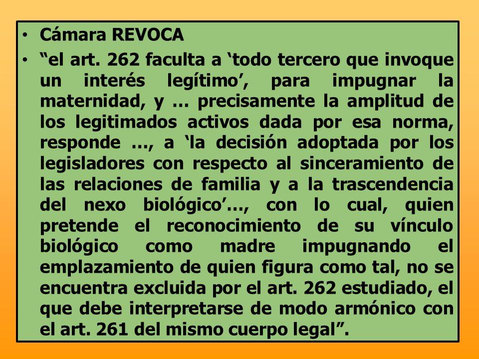 Cámara REVOCA