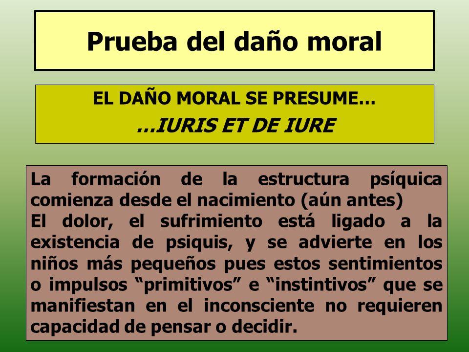 EL DAÑO MORAL SE PRESUME…