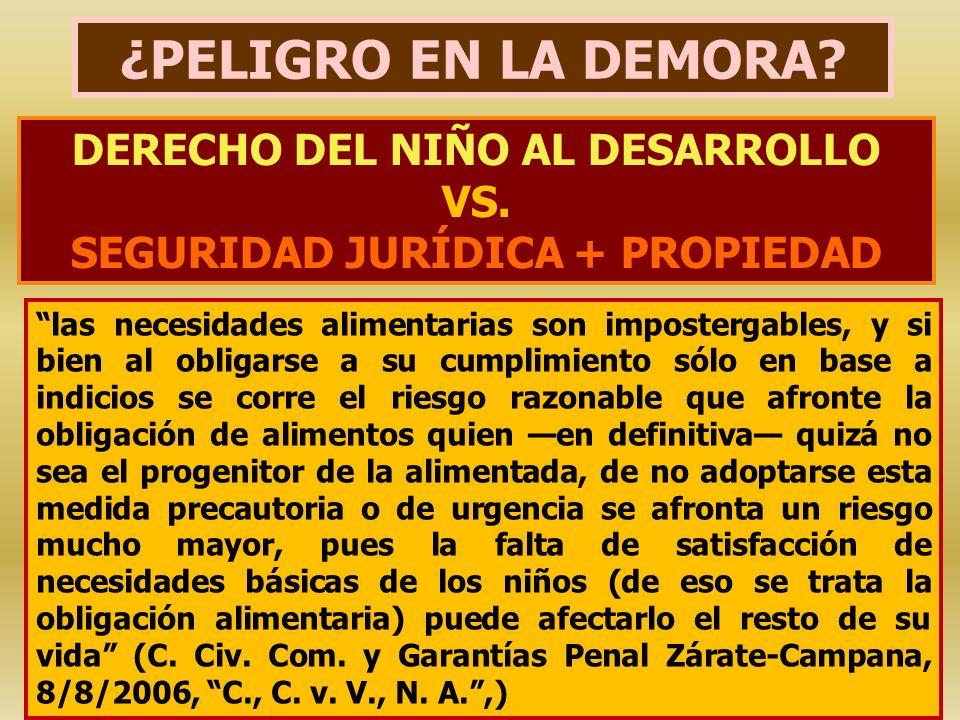 DERECHO DEL NIÑO AL DESARROLLO VS. SEGURIDAD JURÍDICA + PROPIEDAD