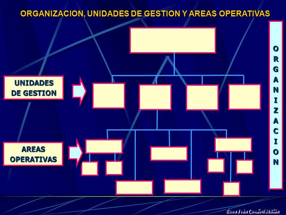 ORGANIZACION, UNIDADES DE GESTION Y AREAS OPERATIVAS