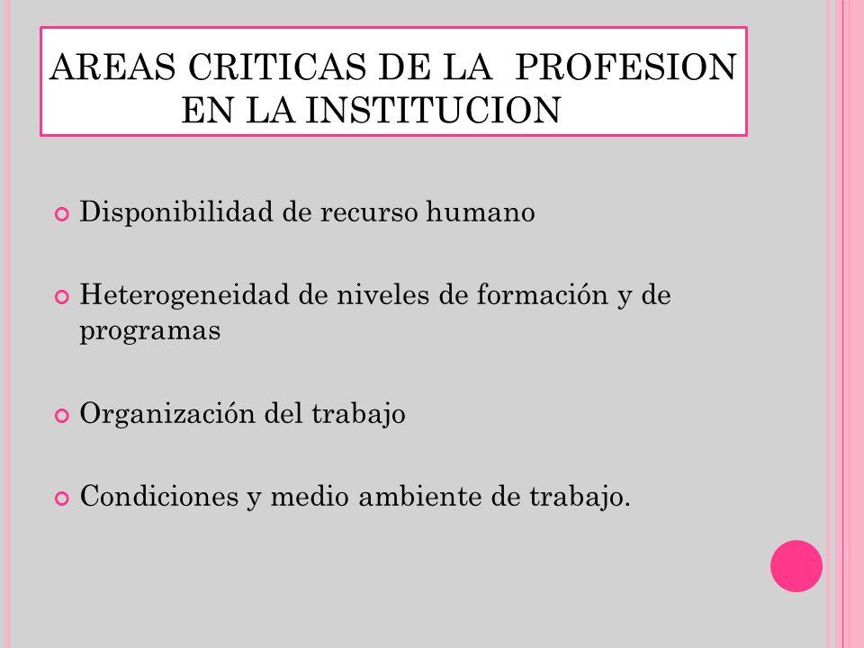 AREAS CRITICAS DE LA PROFESION EN LA INSTITUCION