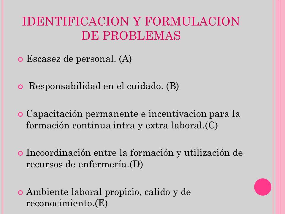 IDENTIFICACION Y FORMULACION DE PROBLEMAS