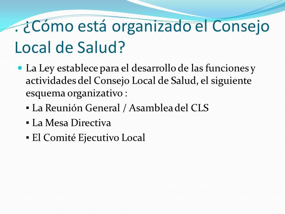 . ¿Cómo está organizado el Consejo Local de Salud