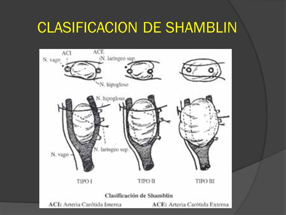 CLASIFICACION DE SHAMBLIN