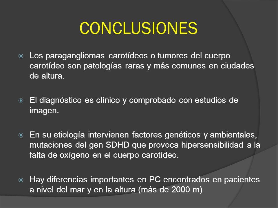 CONCLUSIONES Los paragangliomas carotídeos o tumores del cuerpo carotídeo son patologías raras y más comunes en ciudades de altura.
