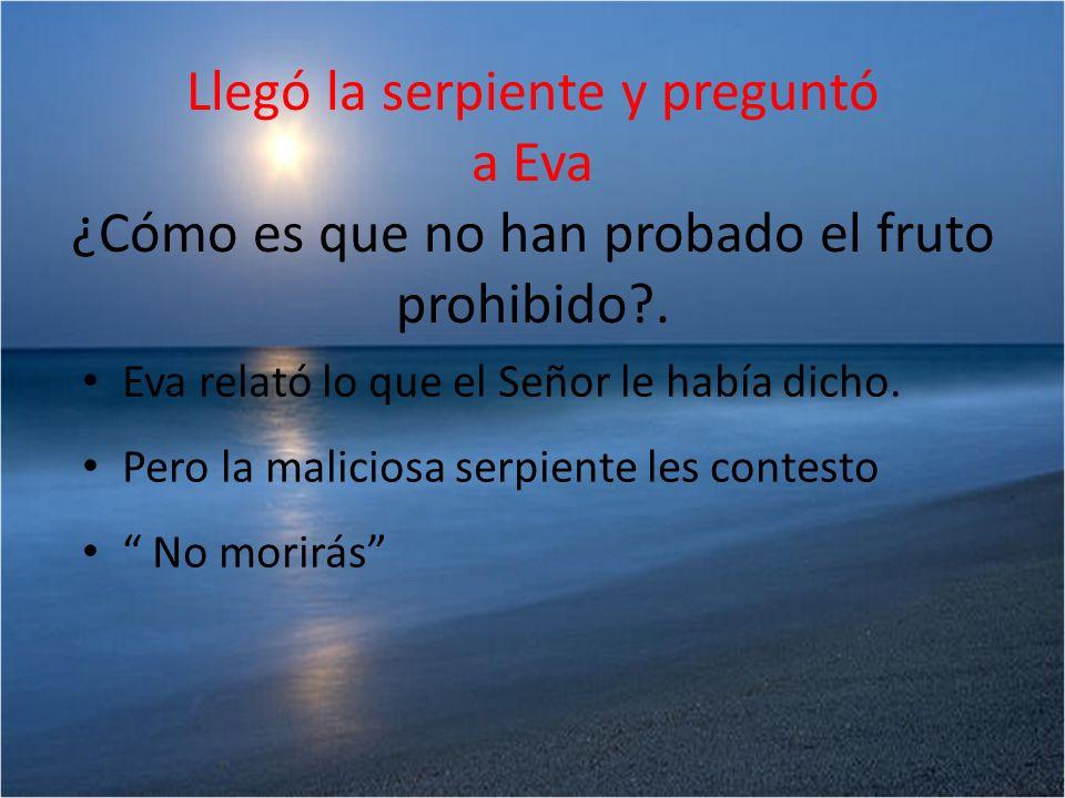 Llegó la serpiente y preguntó a Eva ¿Cómo es que no han probado el fruto prohibido .
