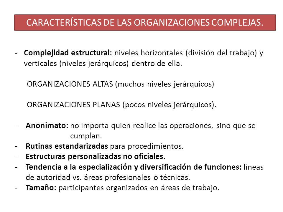 CARACTERÍSTICAS DE LAS ORGANIZACIONES COMPLEJAS.
