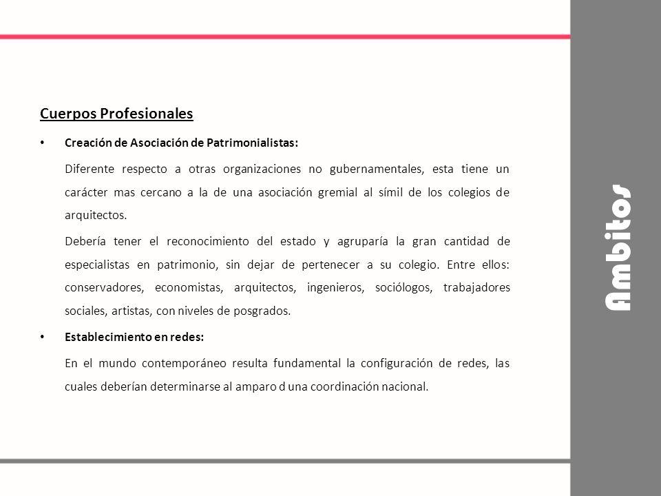 Ambitos Cuerpos Profesionales