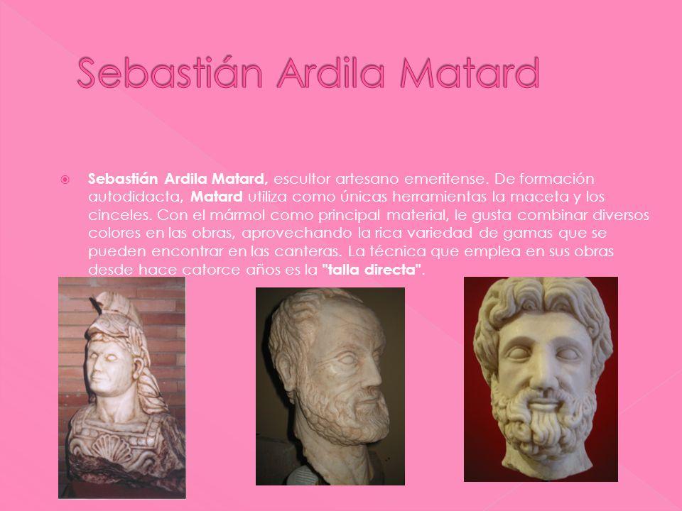 Sebastián Ardila Matard