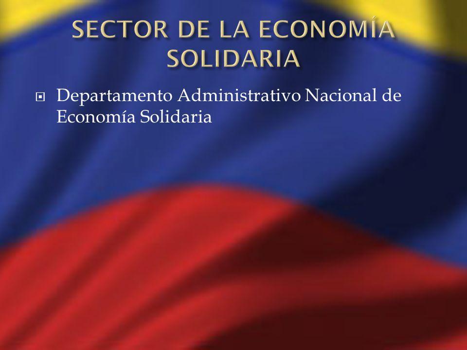 SECTOR DE LA ECONOMÍA SOLIDARIA