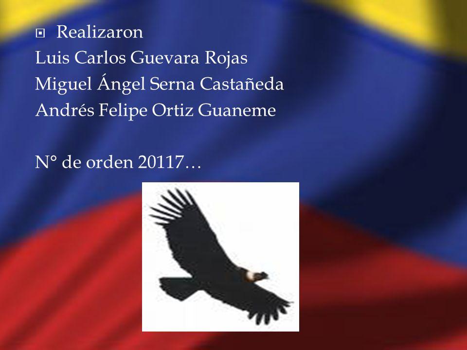 Realizaron Luis Carlos Guevara Rojas. Miguel Ángel Serna Castañeda.
