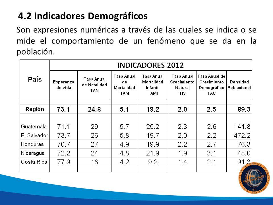 4.2 Indicadores Demográficos