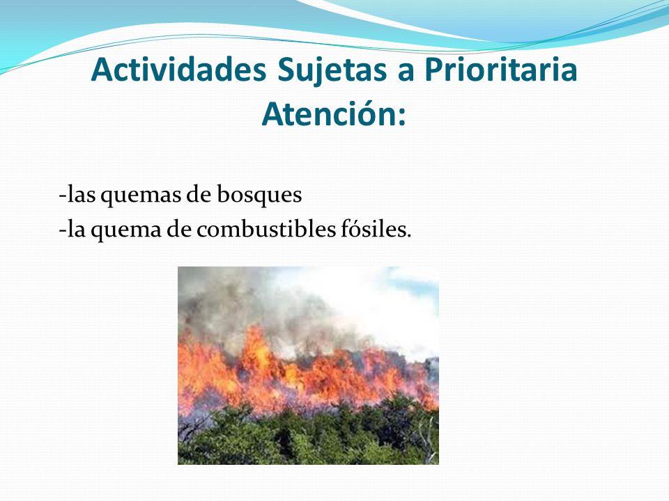 Actividades Sujetas a Prioritaria Atención: