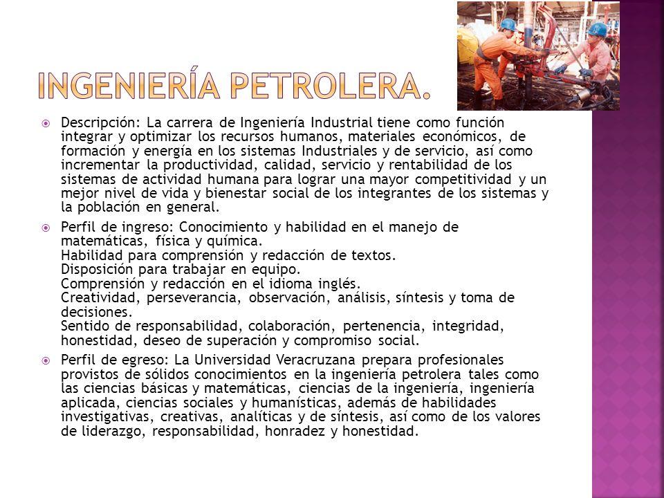 Ingeniería petrolera.