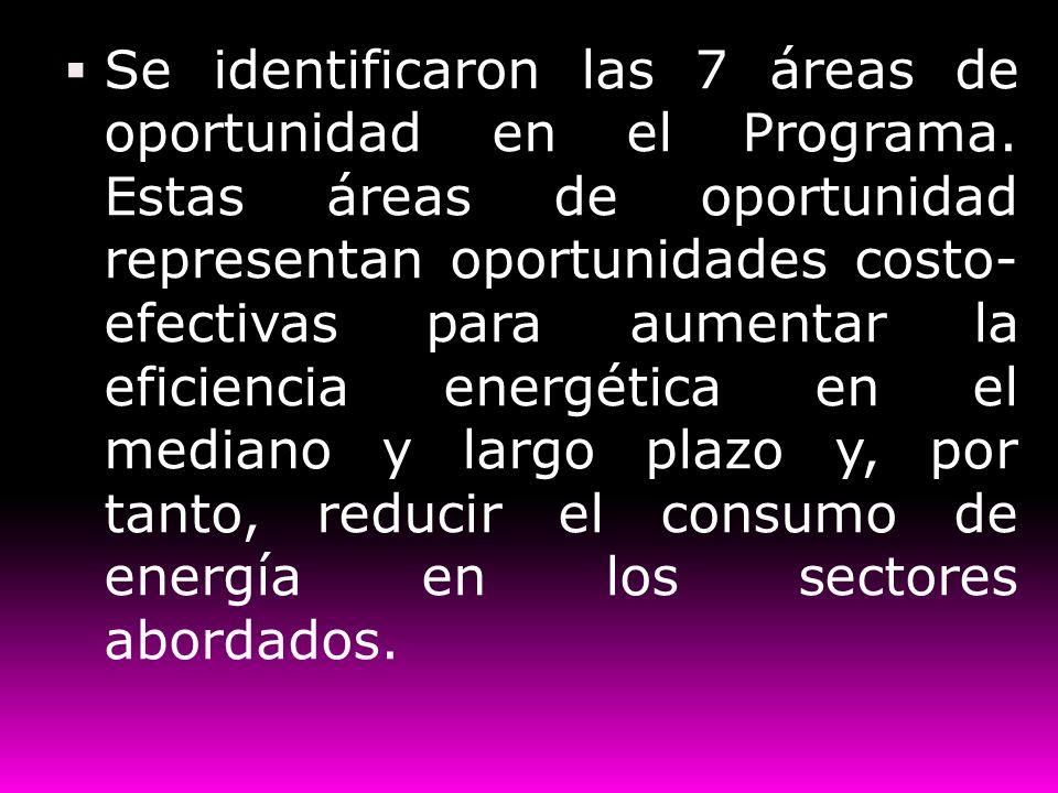 Se identificaron las 7 áreas de oportunidad en el Programa