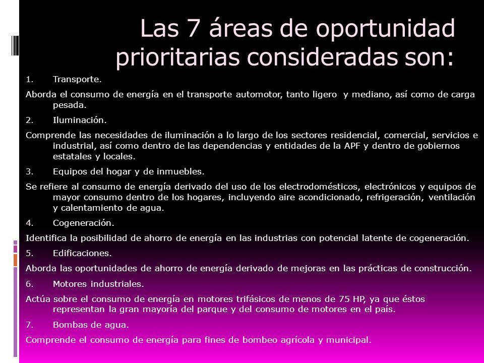 Las 7 áreas de oportunidad prioritarias consideradas son: