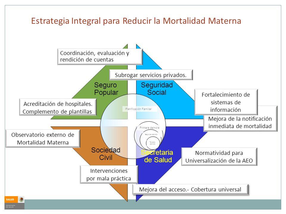 Estrategia Integral para Reducir la Mortalidad Materna