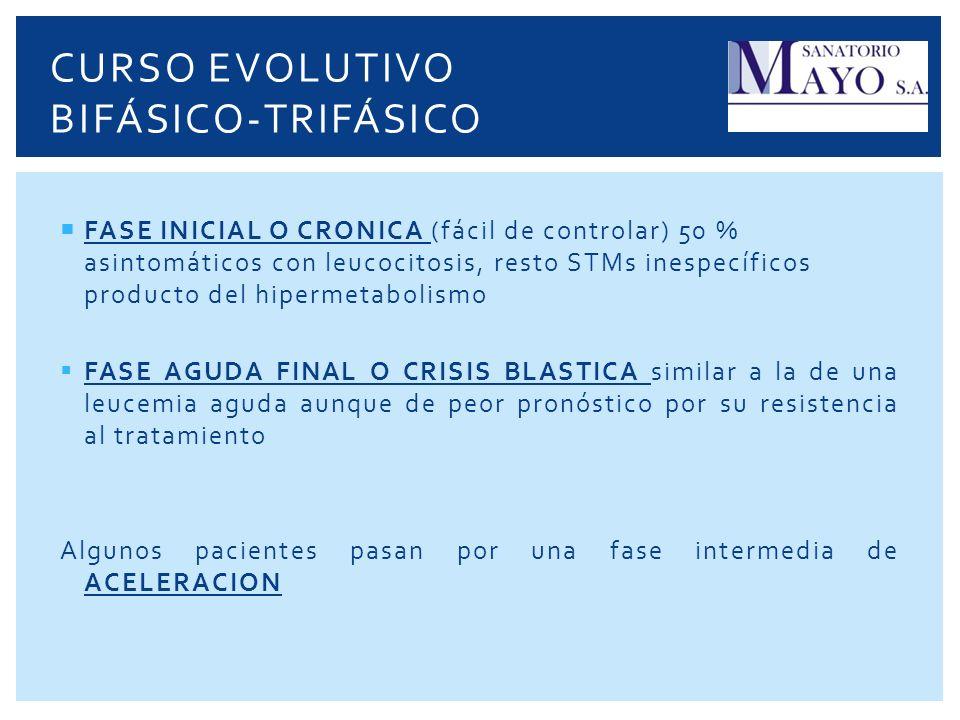CURSO EVOLUTIVO BIFÁSICO-TRIFÁSICO