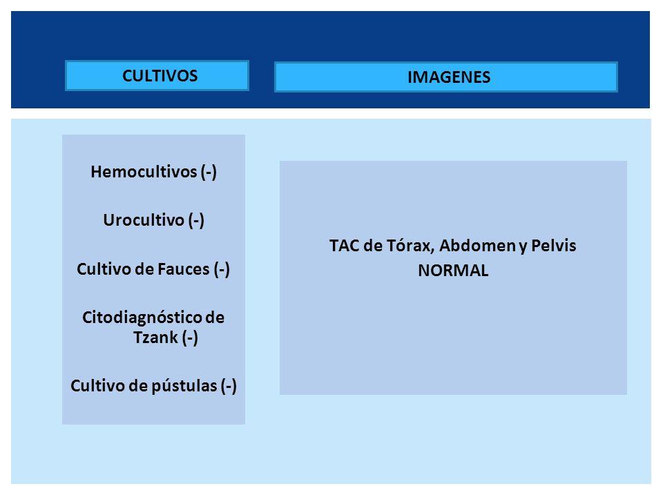 Citodiagnóstico de Tzank (-)