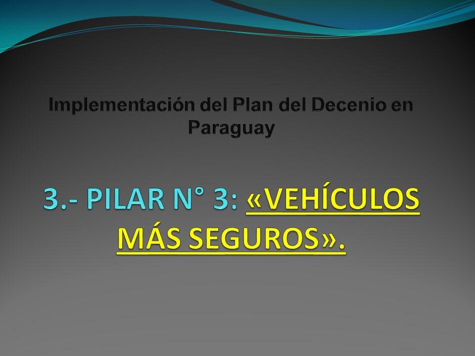 Implementación del Plan del Decenio en Paraguay 3
