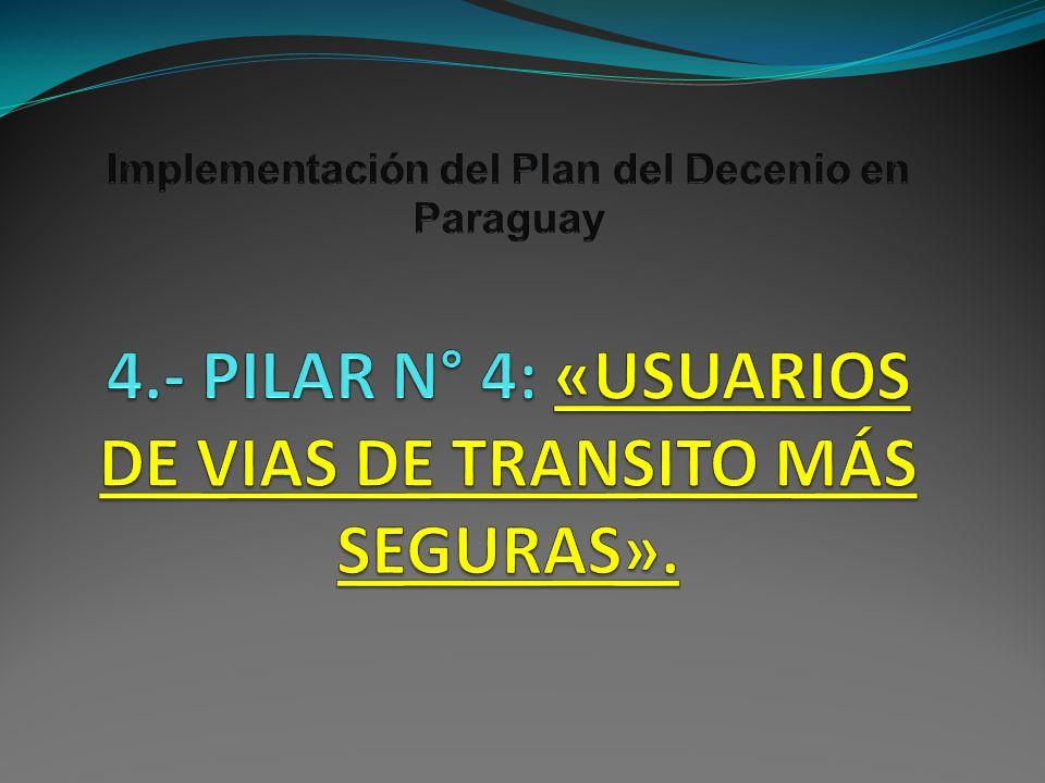 Implementación del Plan del Decenio en Paraguay 4