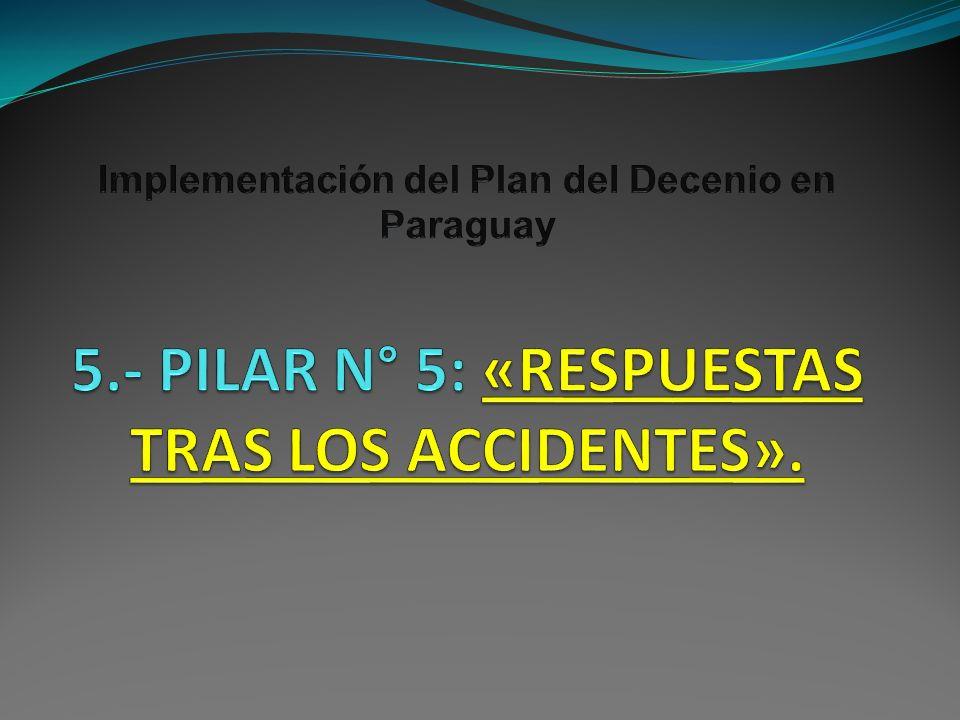 Implementación del Plan del Decenio en Paraguay 5