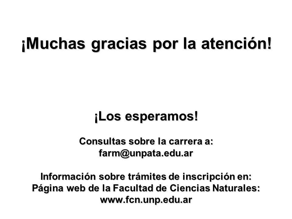 ¡Muchas gracias por la atención!