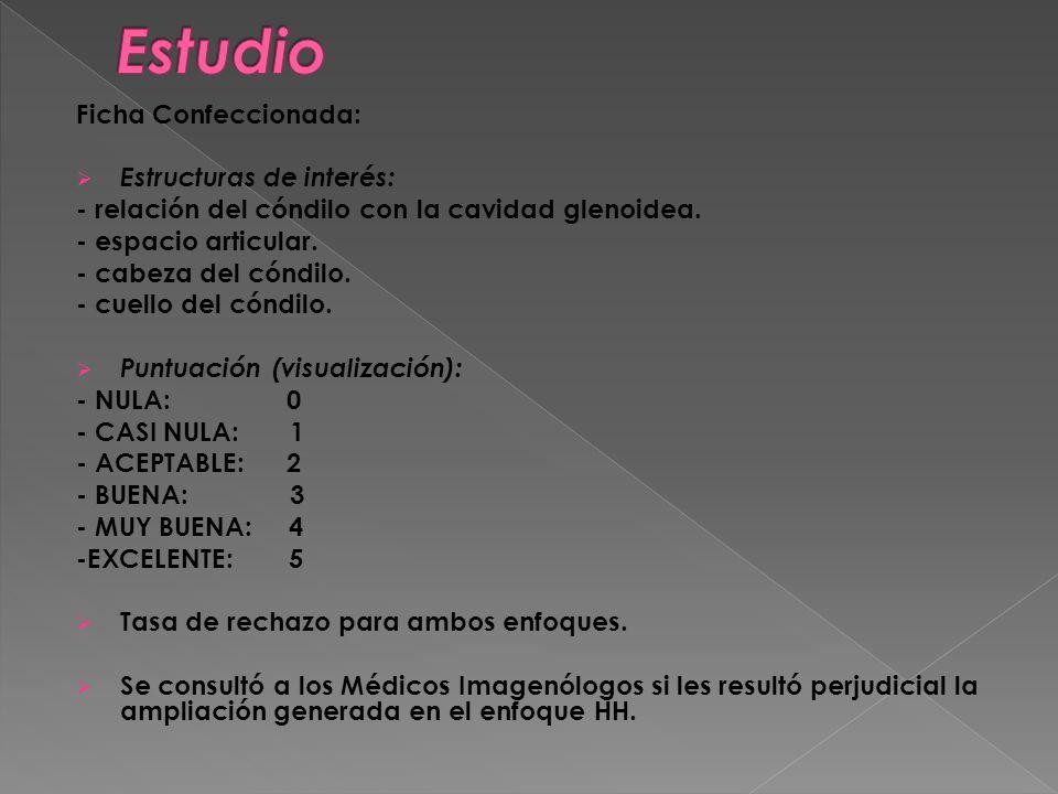 Estudio Ficha Confeccionada: Estructuras de interés: