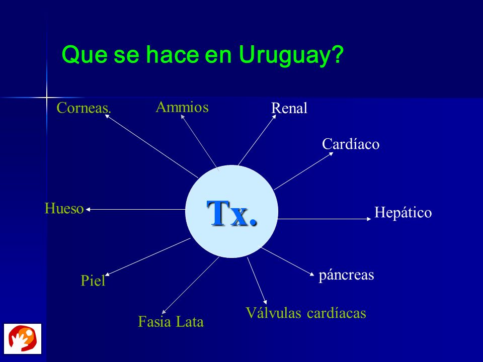 Tx. Que se hace en Uruguay Corneas. Ammios Renal Cardíaco Hueso