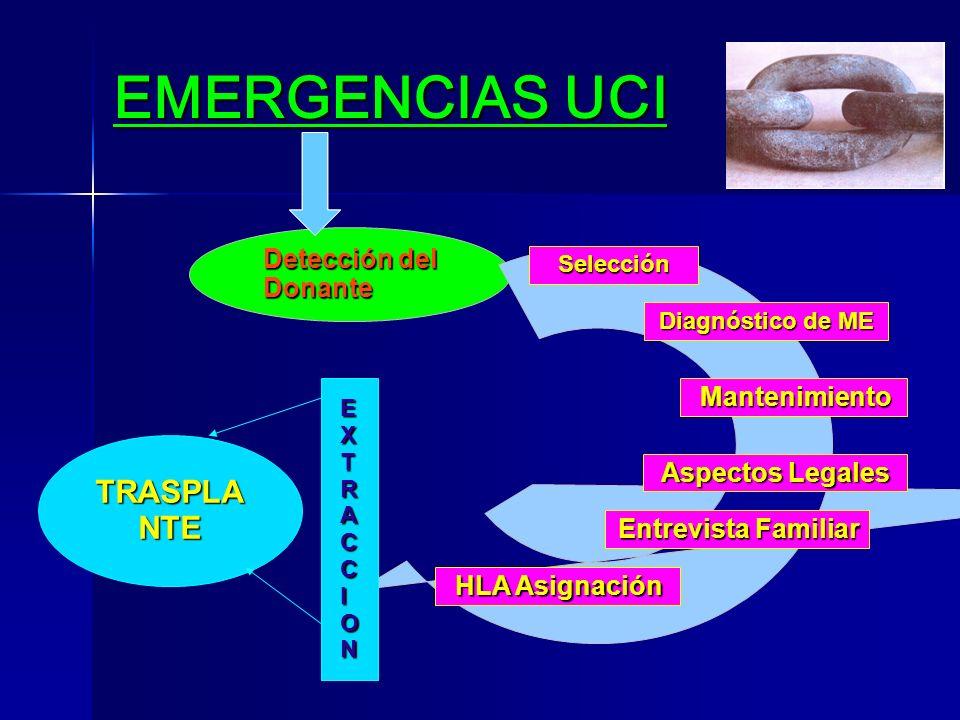 EMERGENCIAS UCI TRASPLANTE Detección del Donante Mantenimiento