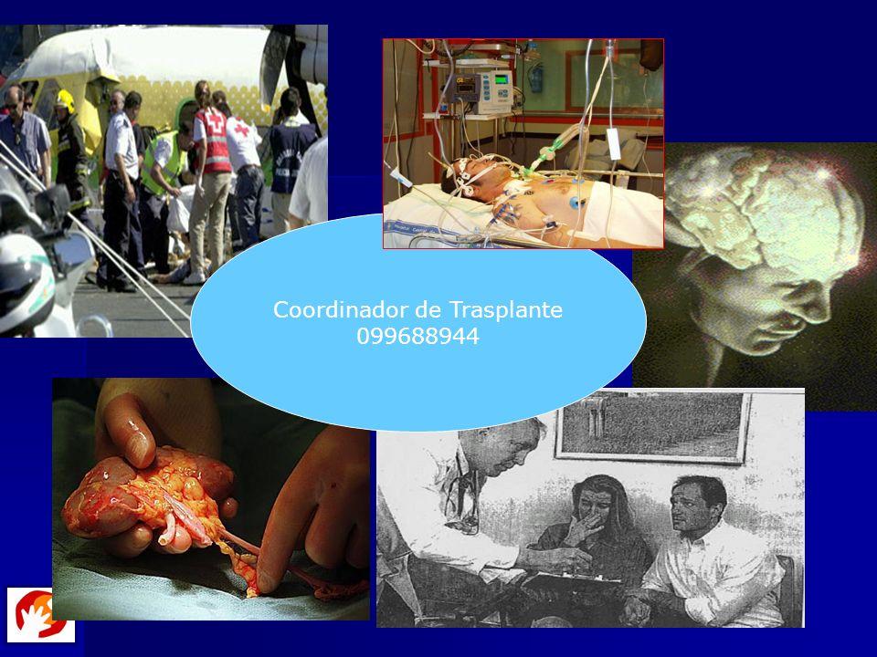 Coordinador de Trasplante