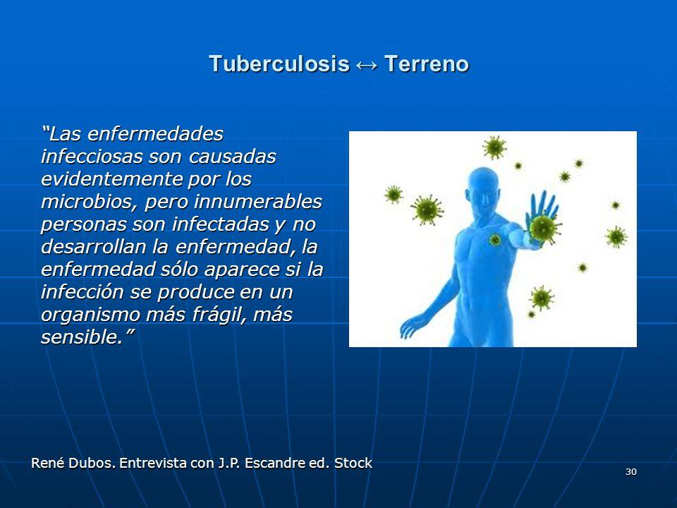 Tuberculosis ↔ Terreno