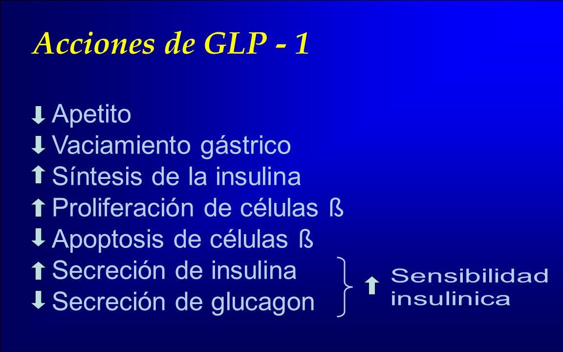 Acciones de GLP - 1 Apetito Vaciamiento gástrico