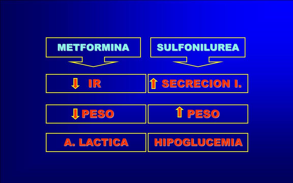 METFORMINA SULFONILUREA SECRECION I. IR PESO HIPOGLUCEMIA A. LACTICA