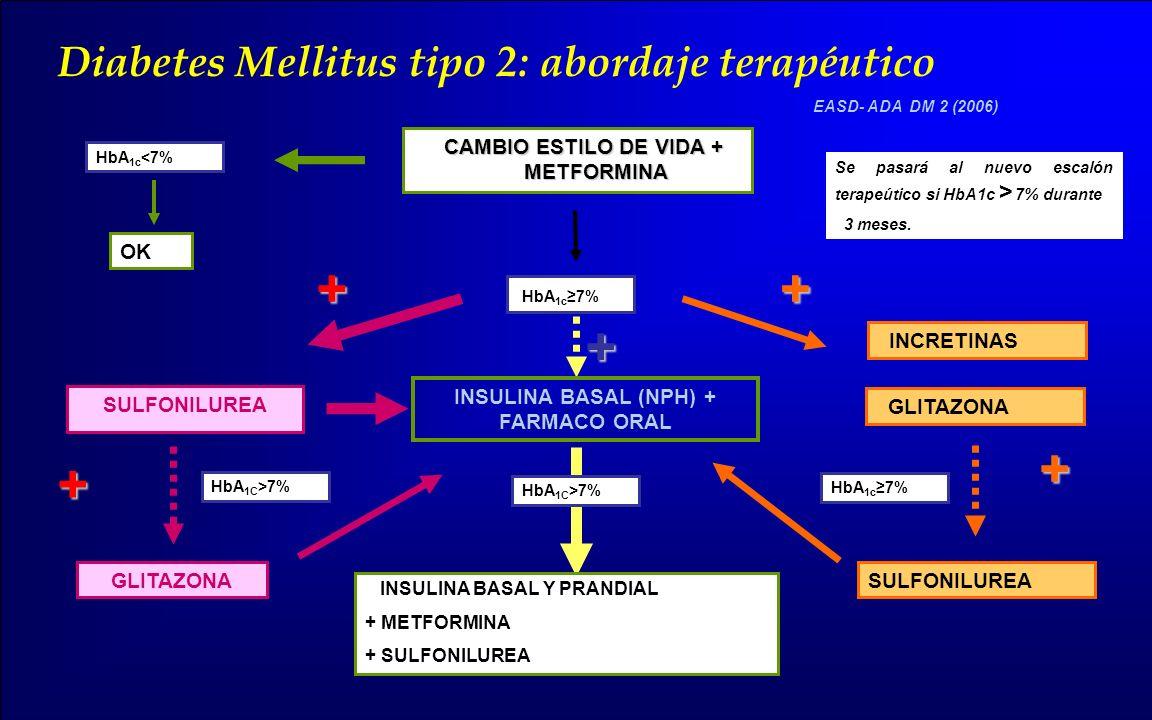 CAMBIO ESTILO DE VIDA + METFORMINA INSULINA BASAL (NPH) + FARMACO ORAL