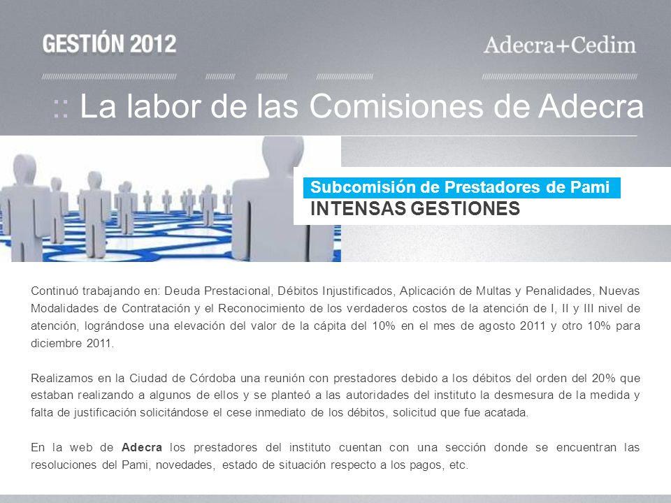 :: La labor de las Comisiones de Adecra