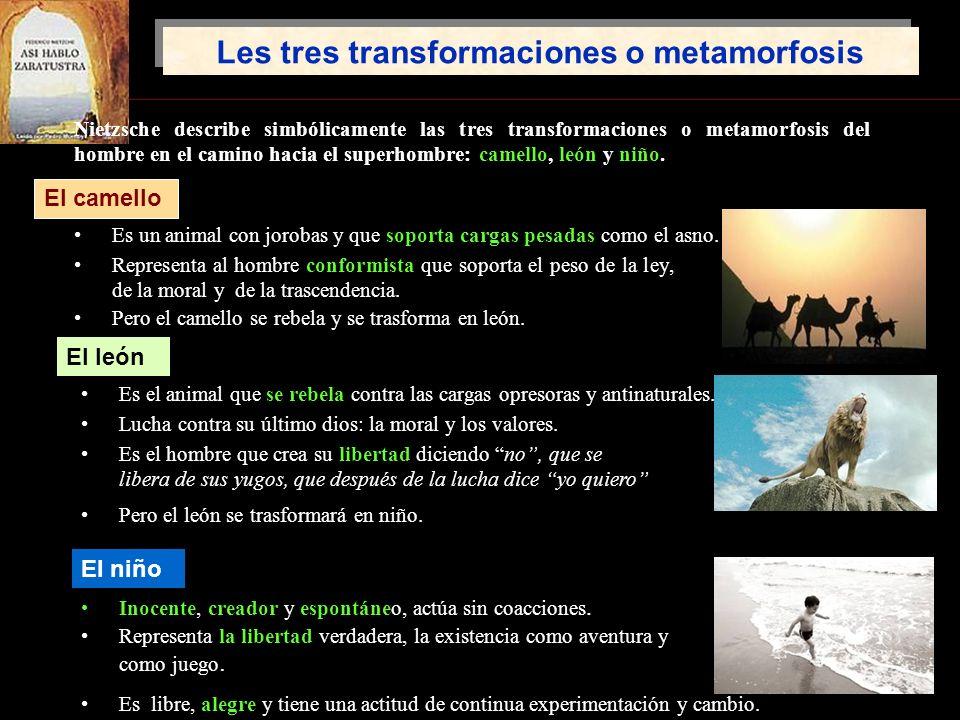 Les tres transformaciones o metamorfosis