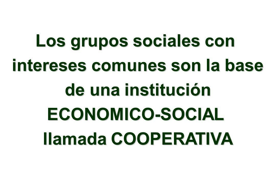 Los grupos sociales con intereses comunes son la base